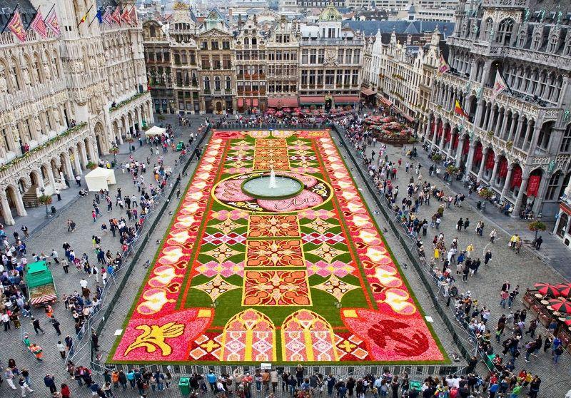L'infiorata della Grote Markt (Grande Piazza) di Bruxelles